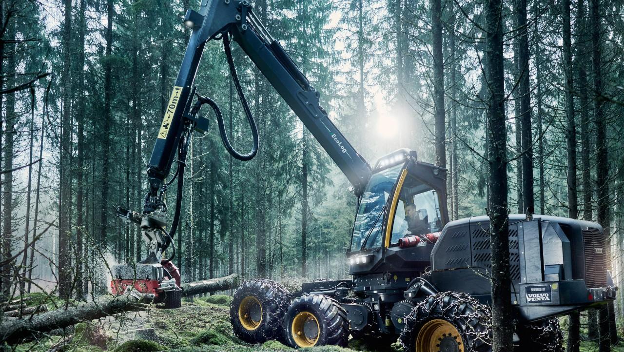 Motoren voor bosbouw